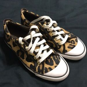 Very lightly used Coach sneakers Leopard print 6.5